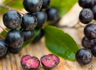 Ce este aronia: descopera beneficiile unor fructe delicioase si gustoase!